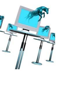 horsecomputercrop